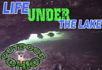 Life Under The Lake - Video